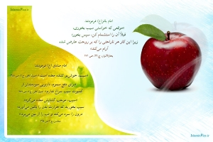 hadith-kavas-sib