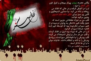 shadat-ali-asghar-k-2