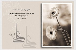 hadith-imam-ali-05