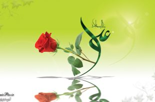 imam-ali-green-wallpaper