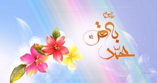 veladat-imam-bagher-03