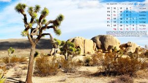 عکس تقویم 98 - تصویر زمینه تقویم 98 - ماه مرداد